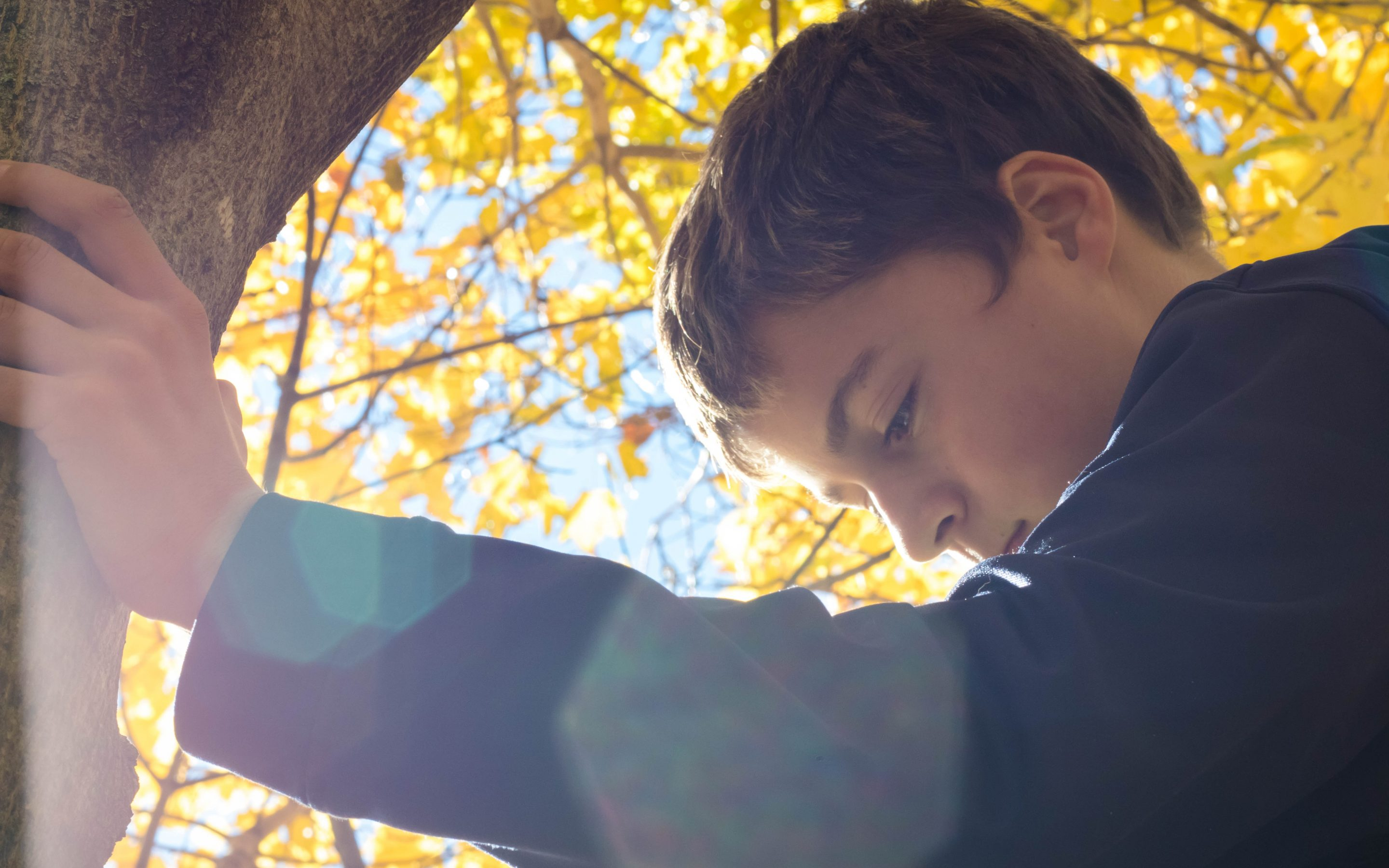 Play Therapy Resources for Helping Children who Refuse To Go To School