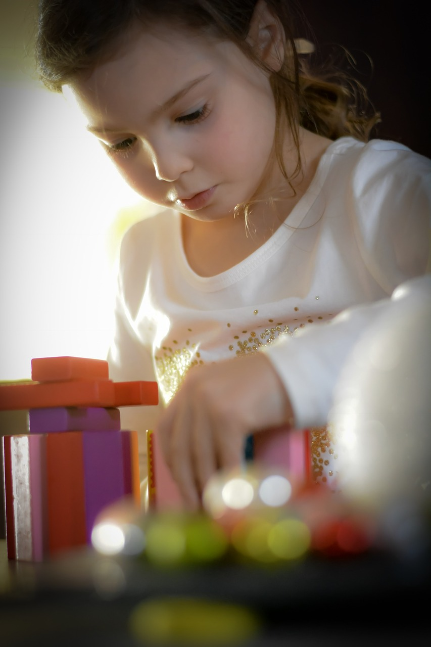 Resources for Child Centered and Directive Play Therapy in the Play Room